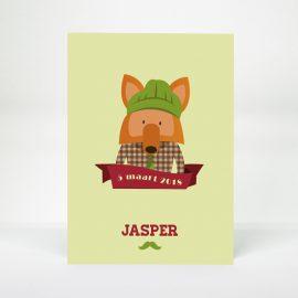Geboortekaartje Hipster Vos