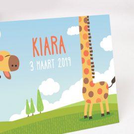 Geboortekaartje Giraf detail